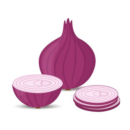 Vector onion collection - set of sliced pieces and whole purple vegetable. Fresh organic nutrition. Cartoon flat style. Ilustração