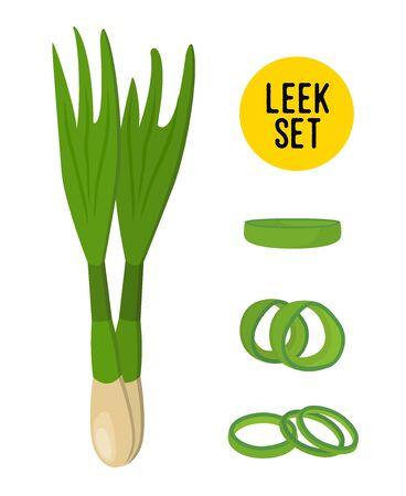 Vector leek set, sliced vegetables and whole farm product. Organic agriculture in cartoon flat style. Ilustração