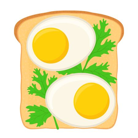 Vector traditional breakfast - sandwich with boiled eggs, parsley. Sliced white bread with cooked egg in cartoon flat syle.