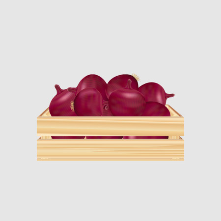 Wood box with onions Illustration