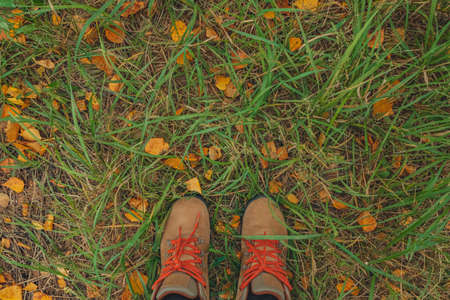 Casual unisex boots with bright laces and colorful autumn fallen leaves. Autumn fall scene. Conceptual image of legs in boots on autumn leaves and grass. Lifestyle Top view. Copy space.
