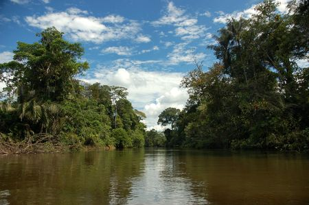 Cuyabeno River,Ecuador. Stock Photo