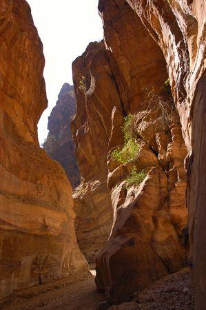Deep Canyon in Jordan.
