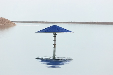drowned: Drowned canopy, Dead sea. Stock Photo