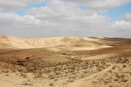 negev: Negev desert, Israel. Stock Photo