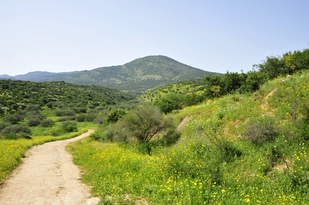 and israel: Miron mountain in Upper Galilee, Israel.