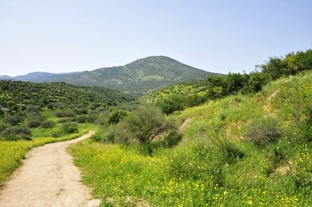 galilee: Miron mountain in Upper Galilee, Israel.