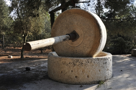 Stone wheel of old olive press. photo