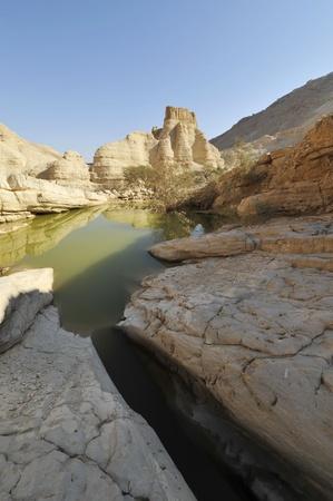 judea: Winter in Judea desert.