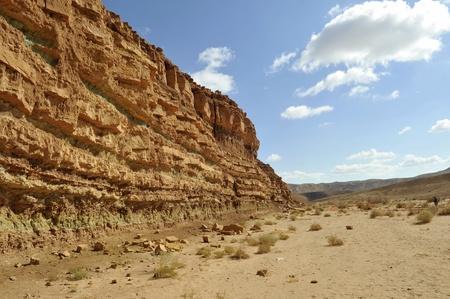 Trekking in Negev desert