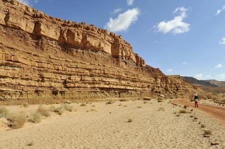 negev: Trekking in Negev desert