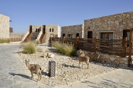 Hotel in Negev desert, Israel