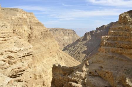 gedi: Ein Gedi ravine in Judea desert near Dead Sea in Israel. Stock Photo