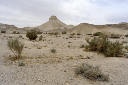 judea: Judea desert landscape in cloudy day, Israel