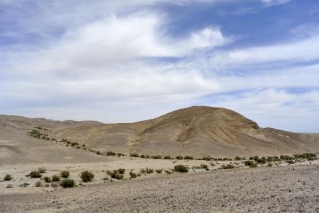 judea: Scenic Judea desert spring landscape, Israel