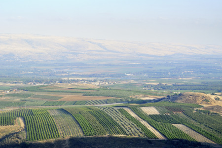 Golan Heights and Metula fields view in Upper Galilee, Israel
