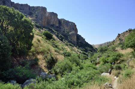 nahal: Green gorge in Nahal Amud national park in Israel