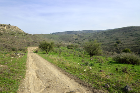the golan heights: Pastoral landscape on Golan Heights, Israel