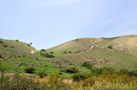 the golan heights: Winter pastoral landscape on Golan Heights, Israel
