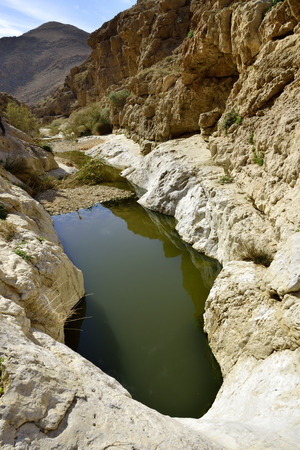 nahal: Negev desert landscape after flood in winter season, Israel. Stock Photo