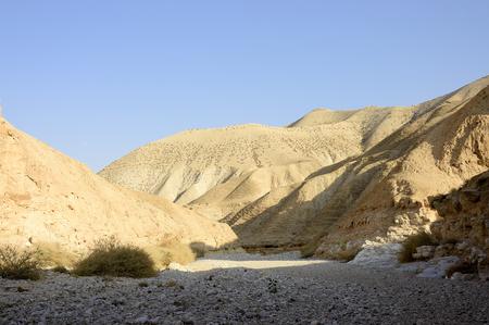 riverbed: Dry riverbed of wadi Og in Judea desert, Israel