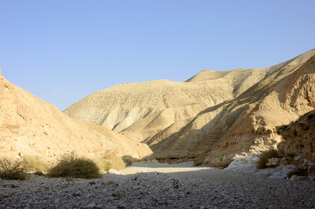 judea: Dry riverbed of wadi Og in Judea desert, Israel