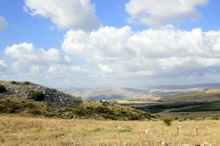 in the heights: Summer scenic view of Golan Heights, Israel