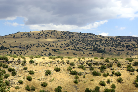 the golan heights: Summer scenic view of Golan Heights, Israel