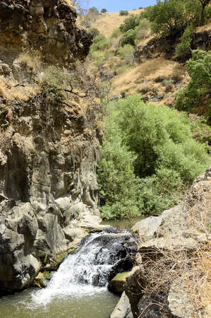 the golan heights: Gorge landscape and stream rapid on Golan Heights, Israel Stock Photo