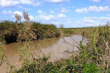 nahal: Wide flood of Nahal Alexander stream after winter rains, Israel