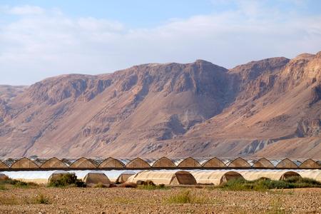 Rural landscape in Judea Desert near Dead Sea, Israel.