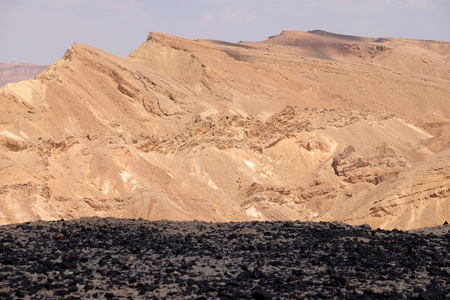 Ground covered obsidian stones in mountains of Negev desert, Israel.