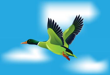eend vliegen in de lucht Stock Illustratie