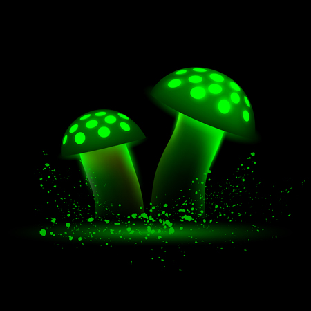 amanita: Green neon mushrooms. Glowing magic agaric on a black background.