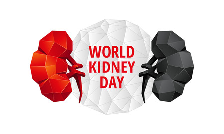 World Kidney Day background. Abstract anatomy organ. Kidneys in 3D polygon style. 일러스트