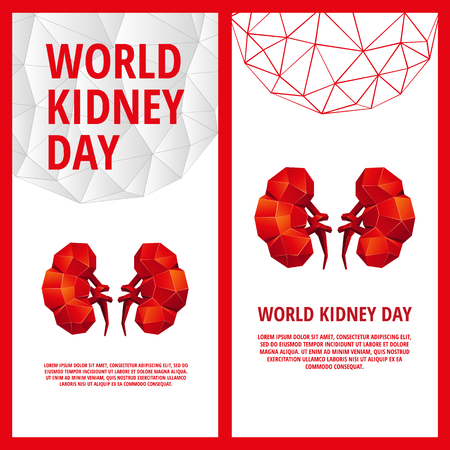 World Kidney Day flyer template. Abstract anatomy organ. Kidneys in 3D polygon style.