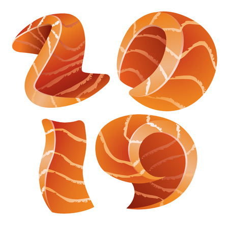 New Year 2019 text icon design. Isolated numbers looks like salmon pieces style for sushi menu design.