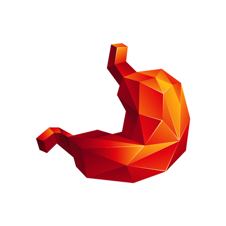 Red low poly human stomach on a white background. Abstract anatomy organ. Stomach in 3D polygon style.