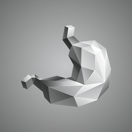 Gray low poly human stomach. Abstract anatomy organ. Stomach in 3D polygon style.