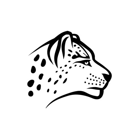 Vector snow leopard. Snow leopard head linear isolate illustration on white background.