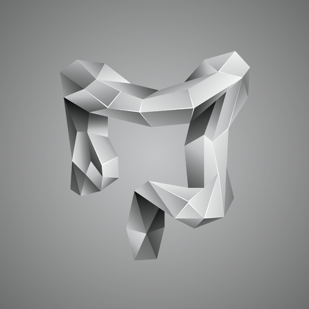 Gray low poly human colon. Abstract anatomy organ. Large intestine in 3D polygon style.