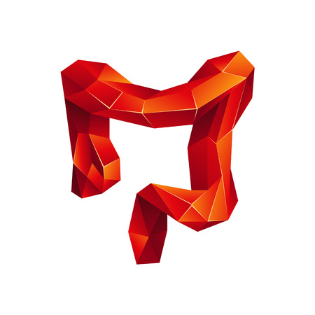 Red low poly human colon on a white background. Abstract anatomy organ. Large intestine in 3D polygon style. Vettoriali