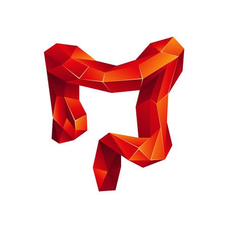 Roter niedriger Poly menschlicher Dickdarm auf weißem Hintergrund. Organ der abstrakten Anatomie. Dickdarm im 3D-Polygonstil. Vektorgrafik