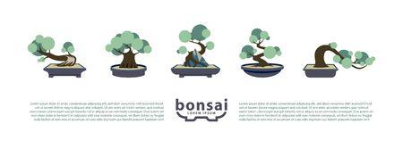 Bonsai trees and bonsai pots set. Vector Flat Icons with Bonsai Styles.