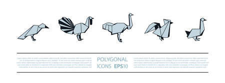 Polygonal Birds Linear Icons Set. Low poly poultry bird icon for banner such as crow, turkey, ostrich, rooster and goose