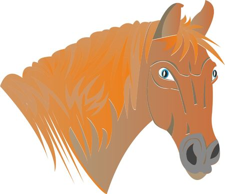 Head of a horse icon. Çizim