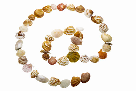 arobase: At symbol made from shells  Shells aligned to shape