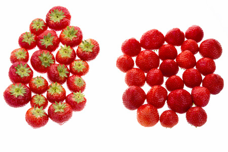 multiple ethnicities: Many garden strawberries arranged in two groups. One group has the strawberry leaves facing up, the other has the little stems facing down. Metaphor for difference. Cutout isolated on white. Closeup. Stock Photo