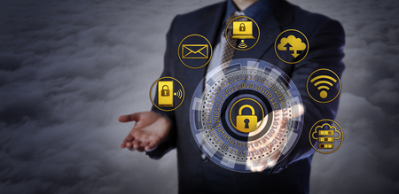 Blue chip manager offering a virtual cyber security mechanism. Concept for computer security applications, encryption, restricted access, protection of personal information, IT security architecture.