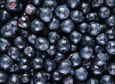 ブルーベリーの新鮮な甘いフルーツのクローズ アップの背景